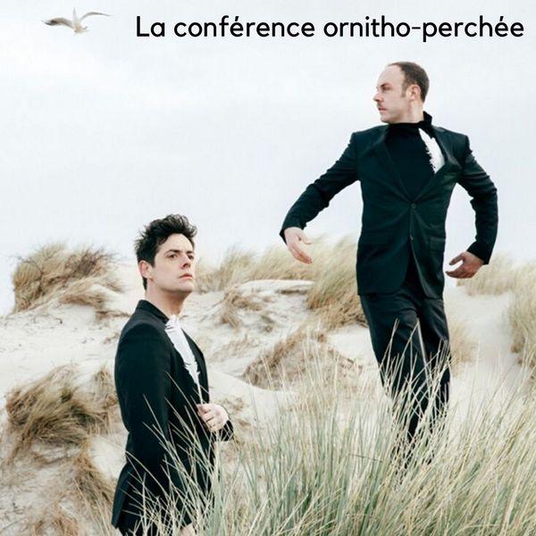 La conférence ornitho-perchée