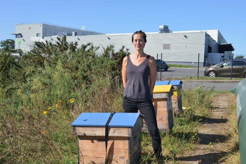 L'apicultrice Julie Guyot a installé quatre ruches sur le site de Coulvé.