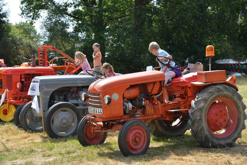 Machines agricoles exposées par la Coopérative d'Utilisation des Machines Agricoles Champs et marais