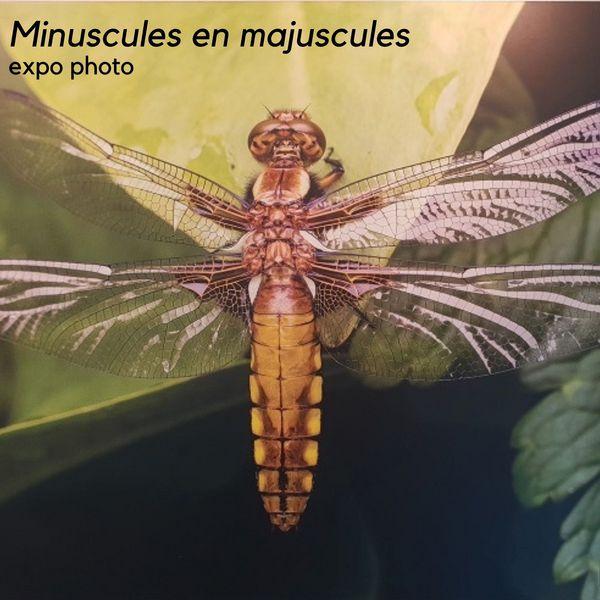 Minuscules en majuscules