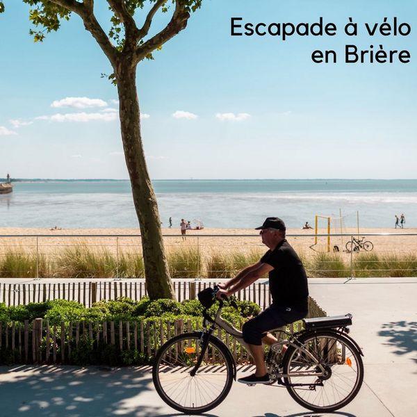 Escapade nature à vélo en Brière