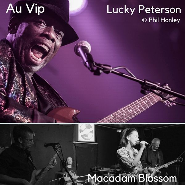 Concerts au Vip.