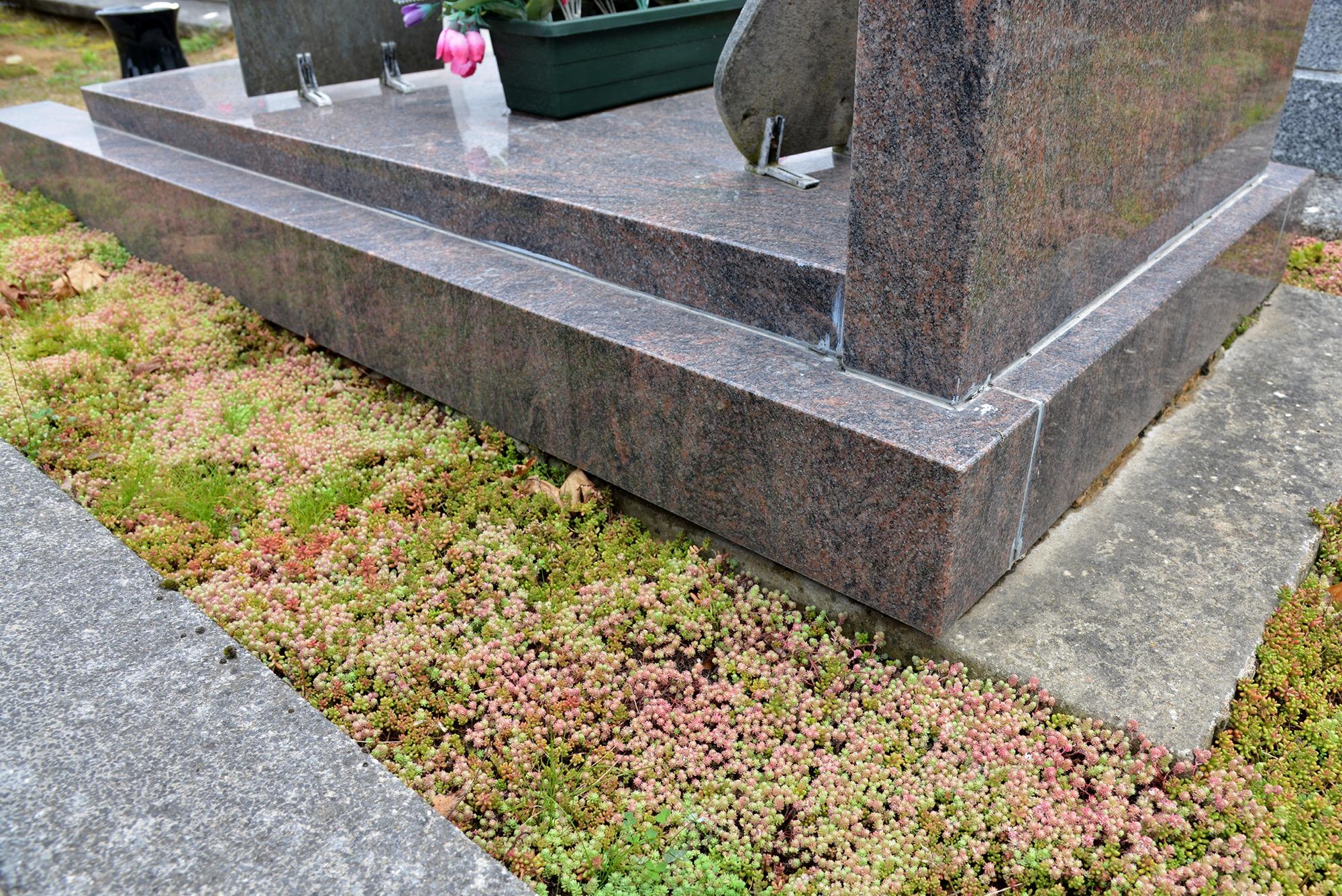 Allée végétalisée près d'une tombe (©Ville de Saint-Nazaire)