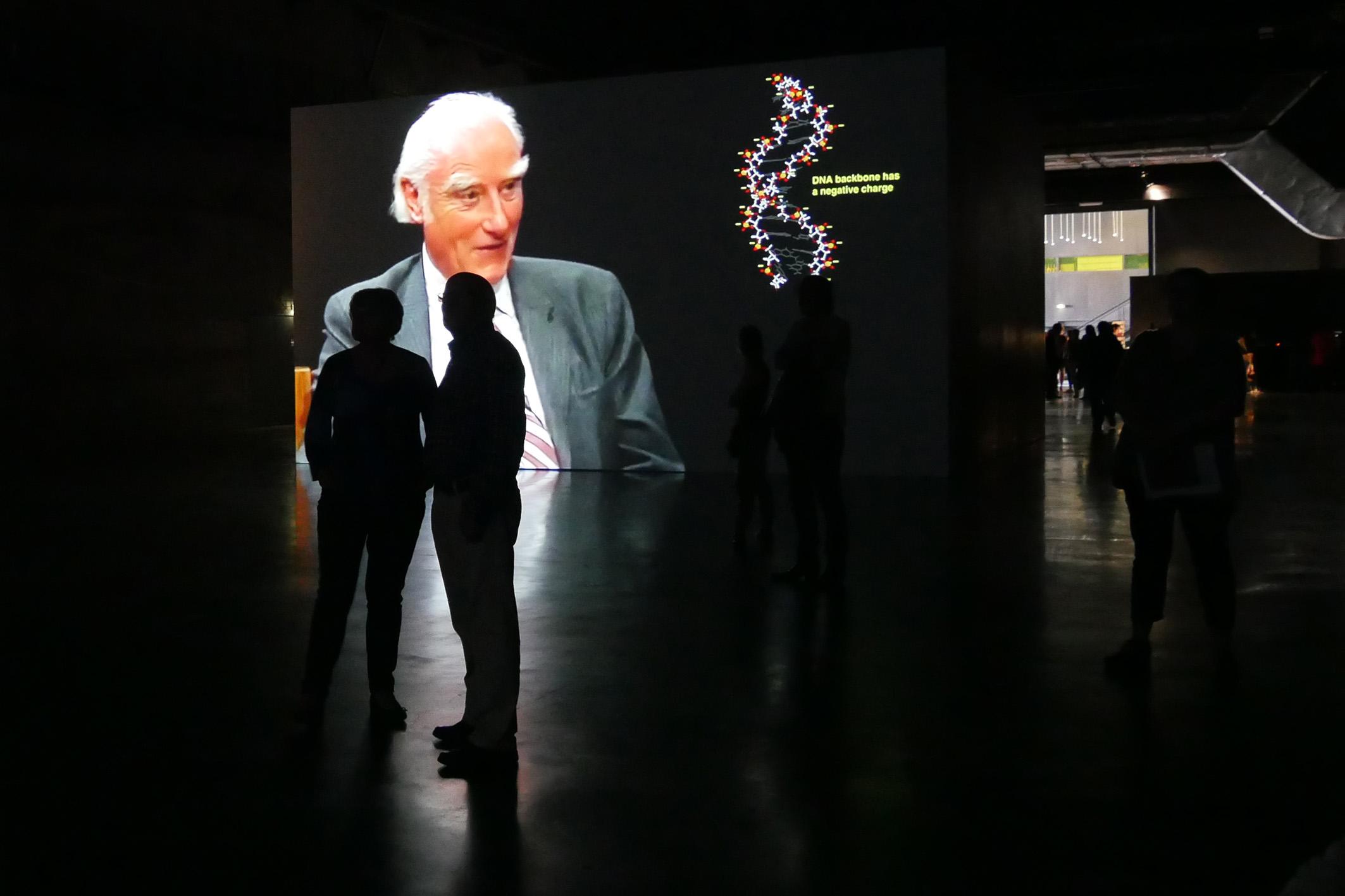 L'artiste londonien Haroon Mirza investit l'espace du LiFE jusqu'au 24 septembre © Ville de Saint-Nazaire