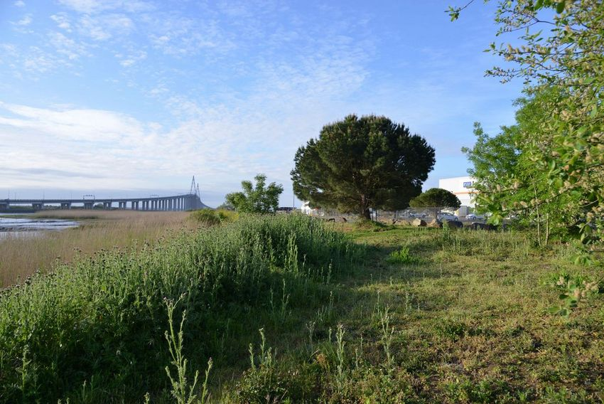 """Parmi les 6 """"places à prendre"""" de l'appel à projets : les abords du port de Méan."""